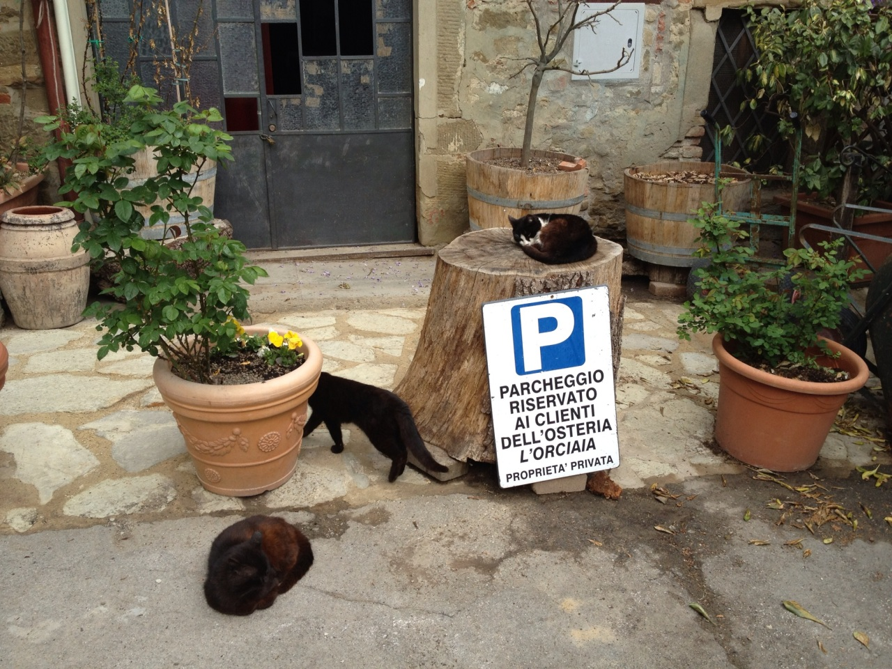 Italy: La Dolce Vita inTuscany